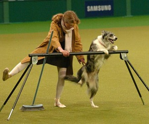 Performing our Ballet routine , Crufts 2009